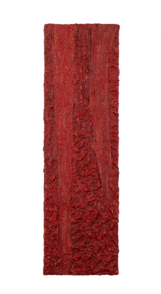 HAM 5 - Red - 170 x 50